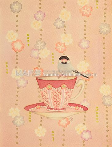 桜文鳥画像