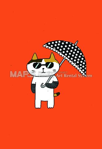 日傘、サングラス、腕カバー画像